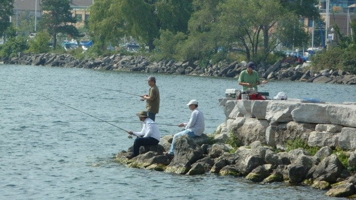Lake simcoe watershed recreation strategy for Lake simcoe fishing