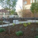 Post - Cross Cancer Institue Healing Garden - Planting