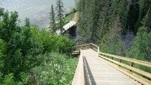 Patricia Ravine Trail Development - Stairway and Bridge